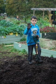 Hamza busy on the manure pile