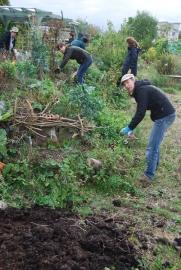 Petra, Radha cutting back plants on the hugel