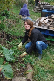 Verity clearing round some rhubarb and mallow on one of the hugels