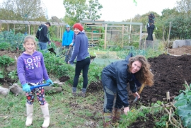 Emma and Charlotte add well-rotted manure around the sides of the hugel
